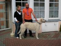 """unser bis dato größter """"Gästehund"""" :-)! - Bild 12: barrierefreie kinder- und hundefreundliche Ferienwohnung****im EG in Lubmin"""