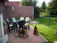 Bild 12: 5-Sterne-Ferienwohnung bis 6 Pers.mit Hund in Ostfriesland,Nordseenähe
