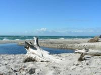 Der Westsstrand liegt auf der Ostsee Halbinsel Darss im Nationalpark Vorpommersche Boddenlandschaft. Der 13km lange Weststrand bietet besondere Reize für alle, die es urwüchsig mögen. Weg vom Strassenlärm, ist nur zu Fuss oder mit dem Rad durch den schönen Darsser Wald zu erreichen (ca. 4 km). Hier finden Sie eine unberührte Natur zu allen Jahreszeiten vor. Nach Stürmen kann man mit gutem Auge Bernsteine finden und lange Strandwanderungen unternehmen. Im Sommer herrscht ein frohes Badeleben. - Bild 6: Erholung am Wasser - Ostseehalbinsel Darss mit Hund - Angeln