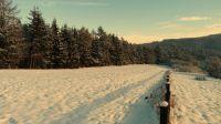 Herrliche Winterspaziergänge im Schnee in unmittelbarer Nähe des Ferienhauses. - Bild 27: Eifel-Ferienhaus Fliegenpilz - für Ihren Urlaub mit und ohne Hund
