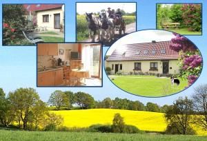 Appartement Schwerin Land und Schaalsee