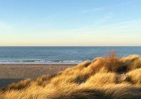 Bild 30: Zeeland Strandhaus - Ihr Ferienhaus direkt an Meer & Strand!