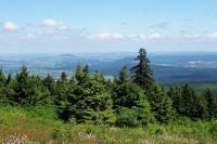 Bild 21: Nichtraucher-Ferienwohnung Ebert&Green im Erzgebirge