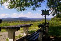 Bild 18: Kleine Ferienwohnung Ebert&Green im Erzgebirge