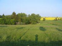 Bild 9: Ostseeferienoase Ferienbungalow Wirthgen - bis 6 Personen