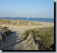 Traumhaft schöne Strände auf der Ile d'Oléron (rd. 35 km) - Bild 9: Ferienwohnung mit Schwimmbad in SW-Frankreich, Nähe Atlantik