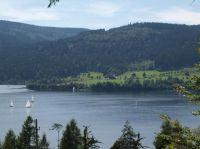 """Mit dem Fahrrad um den Schluchsee, oder einfach um den See wandern.Eine tolle Freizeitbeschäftigung mit viel frischer Luft und Spaß für die ganze Familie. - Bild 33: Ferienwohnung """"Dorfblick"""" im Haus """"Jehle"""" in Oberwihl/Schwarzwald"""