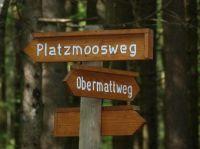 """Bild 24: Ferienwohnung """"Dorfblick"""" im Haus """"Jehle"""" in Oberwihl/Schwarzwald"""