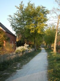 Hier können Sie nach Herzenslust radfahren, joggen, Hund gassi führen, angeln, spazieren gehen direkt vor der Tür. - Bild 3: Haus am Fluß, Garten, Nordseenähe, gerne Familien,Paare,Singles, Hunde