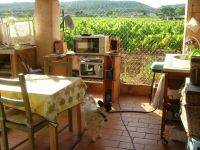 Bild 9: Kleines originelles Rebhaus mit Tierhgehege in der Provence verte