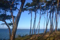Die Steilküste bei Beckerwitz - Bild 24: Ferienhaus Ostsee (Wohlenberger Wiek) nähe Boltenhagen