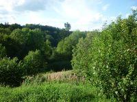 Blick ins Grüne - Bild 15: Ferienwohnung Delattre in der Südeifel