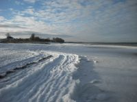 Bild 6: Urlaub mit Hund an der Ostsee