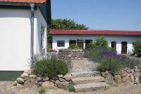 Der Innenhof ist allseitig geschlossen und mit blühenden Sträuchern bepflanzt. - Bild 24: Ferienhaus Beestland am Rande der Mecklenburgischen Schweiz für 6 Personen
