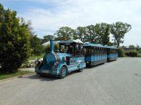 Mit der Bäderbahn kostenlos zum Strand, Haltestelle 80 m entfernt. - Bild 12: Exsklusive Ferienwohnung in Sellin nur 300 m zum Strand und Seebrücke
