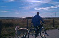 """über den gut ausgebauten Fuß- und Fahrradweg nach Dahme - immer an der Ostsee entlang - Bild 15: Häuschen """"Sunshine Cottage"""" für max. 3 Pers. - Ostsee mit Hund - strandnah"""