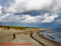 """Bild 27: Ferienhaus """"Ostseetraum""""Urlaub mit Hund an der Ostsee 1,60m hoch eingezäunt"""