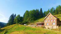 Bild 18: Exclusive Studio- Ferienwohnung im Schwarzwald - Hund incl.