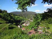 Unvergesslich - der Blick ins Tal - - Bild 27: Exclusive Studio- Ferienwohnung im Schwarzwald - Hund incl.