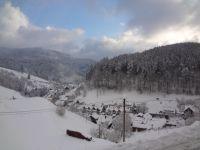 Blick aus dem Fenster - Bild 24: Exclusive Studio- Ferienwohnung im Schwarzwald - Hund incl.