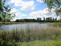 typische Landschaft in der Region vom Horsterwold - Bild 27: Sehr schönes Ferienhaus, jetzt € 50,- Rabatt jedes Wochenende bis Mai
