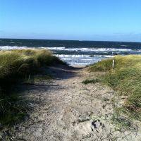 Bild 18: Wieck-Darß Viersternewohnung, große Sonnenterrasse, ruhige naturnahe Lage