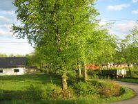 Links ist das Ferienhaus und rechts der Bauernhof des Vermieters. Die Straße wird nur von den Gästen und dem Vermieter befahren. Sackgasse! - Bild 12: Ferienhaus im grünen, ruhig und neben einem Bauernhof