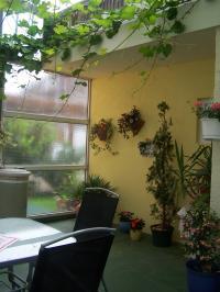 im hinteren Bereich schliesst ein kleiner Garten an, mit Sitzmöglichkeit - Bild 3: mod.Ferienapp.30qm bis 2Pers.i.Radolfzell a.Bodensee zu verm. ab 39€