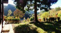 Bild 6: 70m² Ferienhaus mit Panoramablick gegenüber Skihang, Mountaintrailparkour