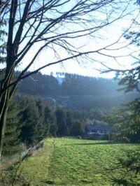 Bild 18: Wunderbare Wanderbasis für Hund und Mensch: Ferienhaus Frenkhausen