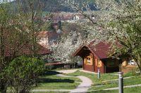 Blick von oben aus dem Ferienpark auf den Ort Stamsried mit dem Barockschloß in der Mitte. - Bild 9: Blockhausurlaub Bayerischer Wald - ideal für Familien mit Kindern und Hund