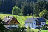 Bild 3: Schwarzwaldhaus Zwink Fewo 8 Personen Hunde & Kinder herzlich Willkommen