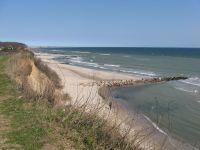 """Unser täglicher Spaziergang mit unseren """"Wuffis"""": Strand, Steilküste, Wald. Was will man mehr? - Bild 12: Top-Ferienhaus Ostsee Meersicht Hunde Nahe Grömitz"""