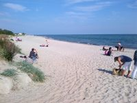 Im benachbarten Grömitz finden Sie einen sehr schönen Yachthafen, eine ca. 3 km lange quirlige Promenade mit langer Seebrücke, sowie einen tollen Hundestrand (Bild). Die eine Hälfte ist in den Sommermonaten mit Strandkörben bestückt. - Bild 15: Hundefreundlich Ostsee mit tollem Meerblick