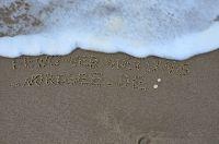 Bild 3: Hooksiel: Fewo MÖWE. Zentral, strandnah, ruhig gelegen. Endlich Urlaub!