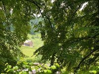 Bild 45: Außergewöhnliche luxuriöse Ferienwohnung im Schwarzwald