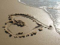 Bild 15: Haus Strandläufer direkt hinterm Deich Hunde & Kinder herzl. willkommen