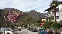 Von den Parkplätzen geht es zum Ferienhaus noch 200m zu Fuß - Bild 3: Sonnig und ruhig gelegenes Ferienhaus in Orasso (Cannobiner Tal)