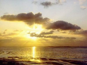 Meerblick Ferienwohnung Kranich Fewo Sankt Peter-Ording Kurteil Bad Strand