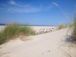 Top Ferienwohnung in direkter Deichlage 100m zum Strand Norddeich Nordsee