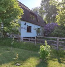 Ferienwohnung auf Rügen, Halbinsel Jasmund, Gemeinde Lohme