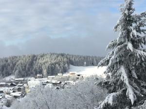 Ferienwohnung Forstpanorama Bayrischer Wald