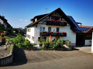 Bodensee / Halbinsel Höri / Ferienwohnung Rosa