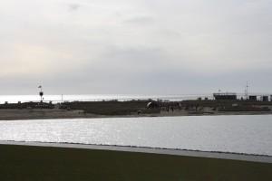Ferienwohnung direkt an der Nordsee